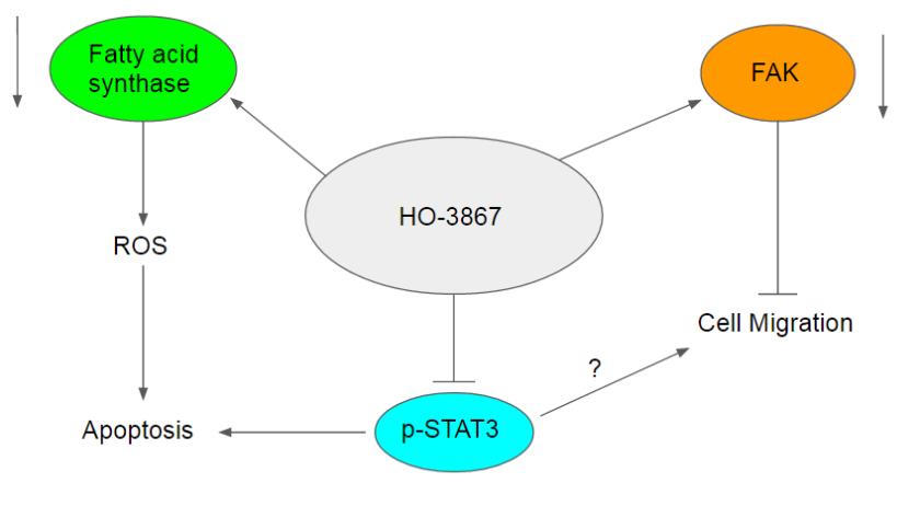 ho-3867