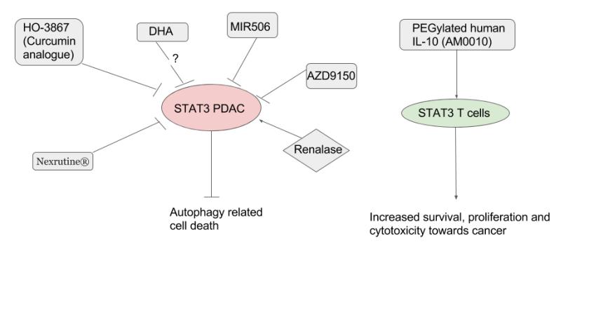 STAT3 inhibitors (1)