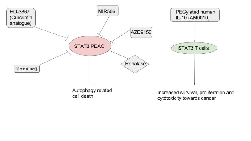 STAT3 inhibitors